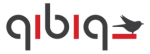 qibiq toonaangevend in digital transformation & commerce innovation Logo